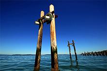 Kayak pilings