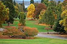 Point Defiance autumn